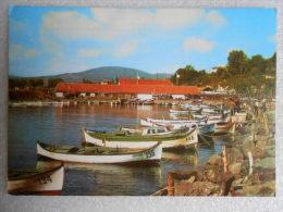 CP Bulgarie , Bulgaria  - MITCHOURINE  - Le Quai Des Pêcheurs  - Les Barques De Pêche - Le Coin Des Pêcheurs - Bulgaria