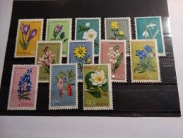 Pologne-Polska 1962-fleurs(**) - Végétaux
