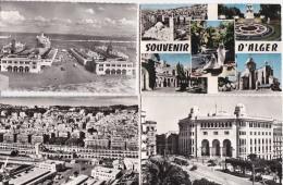 LOT  DE  12  CPSM  D'  ALGER  - Toutes Scanées - Cartes Postales