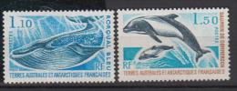 TERRES AUSTRALES     1977      N°    64 / 65         COTE     15 € 60           ( Y 165 ) - Terres Australes Et Antarctiques Françaises (TAAF)