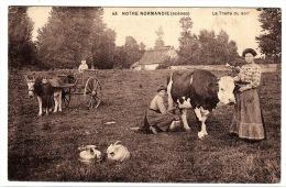 14 - NOTRE NORMANDIE (SCÈNES) - 43 - La Traite Du Soir - Ed. H. Ermice, Vire - Francia