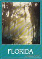 Cypress Paradise Lakeland Florida - Jacksonville