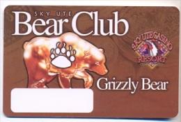 Sky Ute Casino, Ignacio, CO, U.S.A.  older BLANK used slot or player�s card, # skyute-1blank