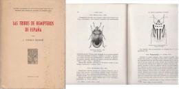 Las Tribus De Hemipteros De Espana   1956 - Ontwikkeling