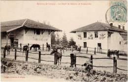 Environs De COLIGNY – Le Dépôt De Remonte De Romanèche - France