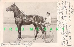 1907 PC: World Pacing Record Holder 'Dan Patch' 1:55 - Hípica