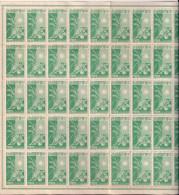 _5Vv-978: N° Mi101  : ** : Volledig Vel - 1 Zegel= . 49 Zegels.... Postfris:...wel 2 Scans..!!! - 1943-45 Shanghai & Nanking