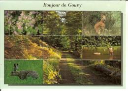 """CP De GOUVY """" Un Bonjour De Gouvy """" - Gouvy"""