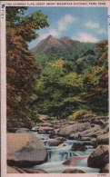 POST CARD THE CHIMNEY TOPS, GREAT SMIKY MOUNTAIN NATIONAL PARK, TENNESSEE - Smokey Mountains