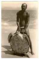 """T908 - Guinea Espanola - Tortuga Marina """"Tortue - Turtle"""""""