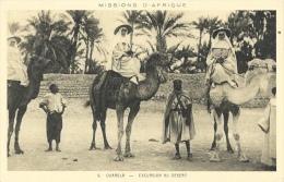 Missions D'Afrique - Ouargla - Excursion Au Désert - Edition Soeurs Missionnaires D'Afrique - Carte Non Circulée - Missions