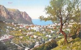 Capri - Panorama - Edition Brunner & Co - Carte Non Circulée - Napoli