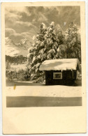 Winter Landscape Old Postcard Travelled WWII NDH 1943 Bb - Cartoline