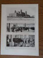USA - New York Mill's Hotel - Ellis Island Migration   -Print 1911 1AM63 - Stiche & Gravuren