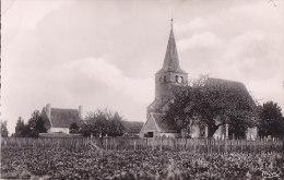 Cpsm Petit Format STE MARIE La BLANCHE - L'Eglise - Autres Communes