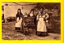 LAITIERE FLAMANDE ATTELAGE DE CHIEN HONDENKAR MELKMEISJE LAIT DOG DRAWN CART HONDEKAR VOITURE à CHIENS HUNDEKARRE 3168 - Craft