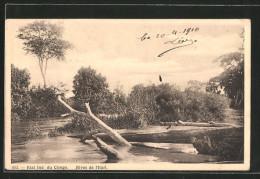 CPA Ituri, Rives De L'Ituri - Congo - Kinshasa (ex Zaire)