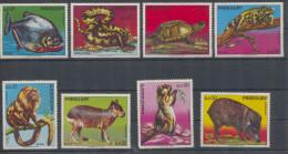 Paraguay Fauna MNH - Paraguay