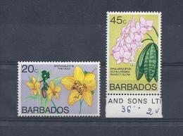 150021423   BARBADOS  YVERT  Nº  432/3  **/MNH - Barbados (1966-...)