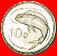 ★FISH: MALTA ★10 CENTS 1998! LOW START★NO RESERVE! - Malta