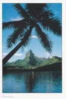 CPM La Baie De Opunohu, Moorea - Tahiti