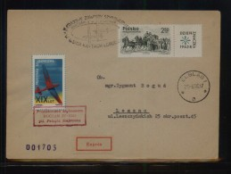 POLAND 1966 2ND NATIONAL GLIDING CHAMPIONSHIPS COMM COVER BOCIAN GLIDER FLOWN COVER LESZNO RECEIVER CINDERELLA STAMP - Airmail