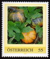 ÖSTERREICH 2009 ** Kürbis, Pumpkin - PM Personalized Stamp MNH - Ernährung