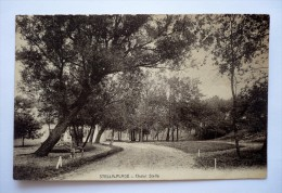 62 - Rare Carte De STELLA-PLAGE - Chalet STELLA - Other Municipalities