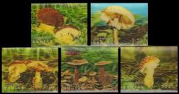 BHUTAN 3-D Mushroom, Fungi-5 Different Plastic Stamps-MNH - Bhutan