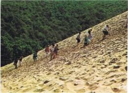 Cpm   La Dune Du Pilat - Arcachon
