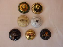Capsules Plaques De Muselet - Capsules & Plaques De Muselet