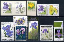 Fleurs  Iris  differents pays  - Neufs Impeccables