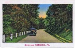 Scene Near GREELEY PA - Etats-Unis