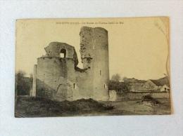 Dordives - Les Ruines Du Château Féodal Du Mée - Dordives
