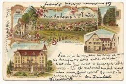 Rare CPA Dos Simple Illustré GRUSS Aus SCHOMBERG  VOIR SCANS Et Descriptions - Schömberg