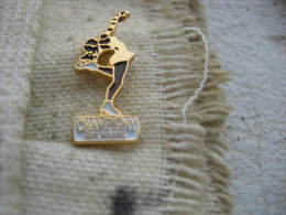 Pin's Du Club De Patinage Sur Glace De La Ville De CHAMPIGNY Sur MARNE - Patinage Artistique