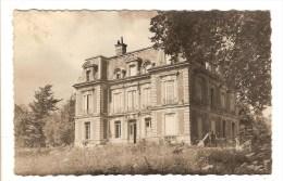 LOUVRES - VAL D'OISE - LE CHATEAU - Louvres