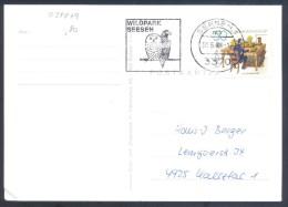 Germany Deutschland 1978 Card - FAUNA Birds: Slogan Owls Eulen Hiboux Chouette Gufo Civette  Coba Eagle Adler - Adler & Greifvögel