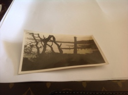 Photo 1937  Bregancon Plage - Places
