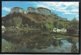 TIBET - The Potala Palace (3600 Mètres) - Tíbet