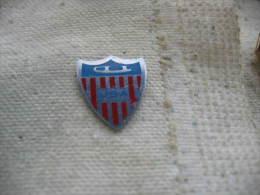 Pin´s Patinage USA. Sports De Glisse Sur Glace - Patinage Artistique