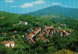 PRUNETTA   (PT)   STAZIONE  CLIMATICA  ESTIVA              (VIAGGIATA) - Italia