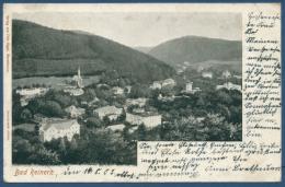 Bad Reinerz Gesamtansicht, Gelaufen 1905 Marke Fehlt (AK52) - Schlesien
