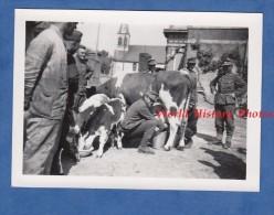 Photo Ancienne - THIERNU ( Aisne ) - Occupation Allemande Du Village - Traite D'une Vache Par Un Soldat - WW2 1940 - Guerre, Militaire