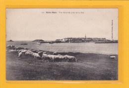 SAINT-MALO - 35 - AGRICULTURE - ELEVAGES - TROUPEAU DE MOUTONS A LA CITE - VUE GENERALE PRISE DE LA CITE - Saint Malo