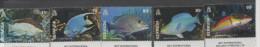BERMUDA , 2015, MNH, MARINE LIFE, FISH, 5v - Vissen