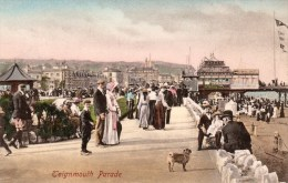 Postcard - Teignmouth Pier & Parade, Devon. 49559 - Otros