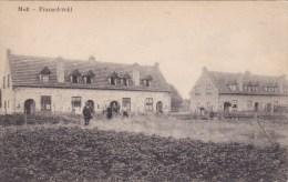Mol - Franschveld - Mol
