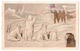 CPA ILLUSTRATEUR  OURS CHAMPAGNE EXPEDITION POLAIRE AMERICAINS RARE BELLE CARTE !! - Unclassified
