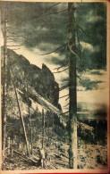 MUNTII GHERGHIULUI,SOVATA BAI,1951,POSTCARD,ROMANIA - Roumanie